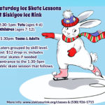 Saturday Skate Lessons at Siskiyou Ice Rink